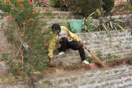 gardening-mizoram