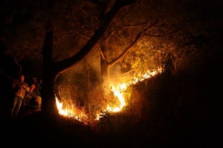forest fire, durtlang north, mizoram