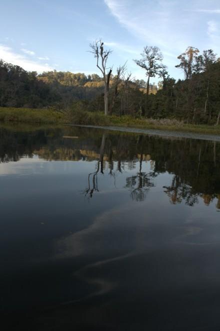 palak lake