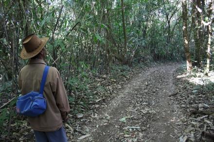 phawngpui guide