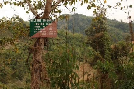 longmasu forest