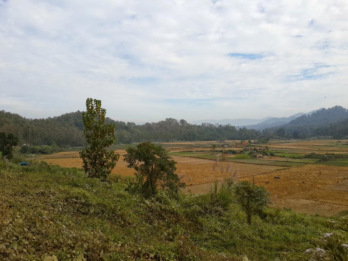 Paddy fields near Bairabi