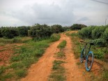cycling-whitefield-bangalore-04
