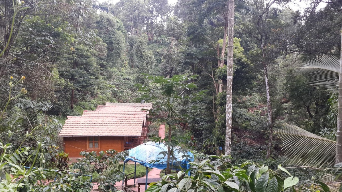 The cottages at Ganesh Estate Homestay, Madikeri