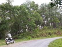 phullen-road-mizoram-35
