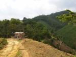 thlam-zawngin-road-mizoram-11