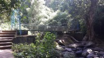 A foot bridge on the way of Irupu Falls