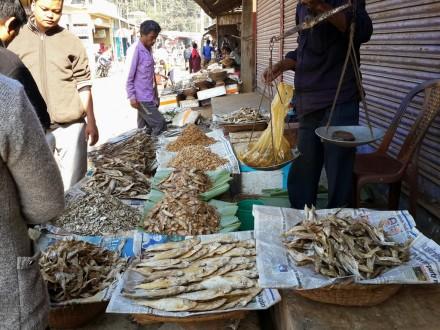 Damcherra-Tripura-06
