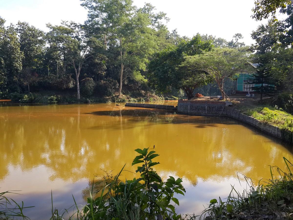 Fish pond, Zawlnuam
